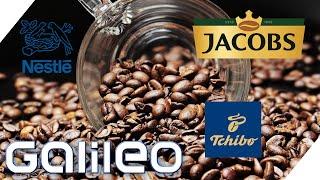 Multi-Milliarden Geschäft! Welcher Kaffee-Giganten beherrscht den Markt?   Galileo   ProSieben