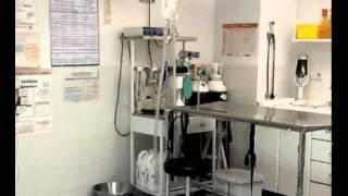 preview picture of video 'Anubis Clinica Veterinaria | Pozuelo de Alarcón'