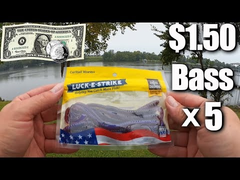 Fishing with $1.50 Worms from Walmart – Beginner Bass Fishing Tips
