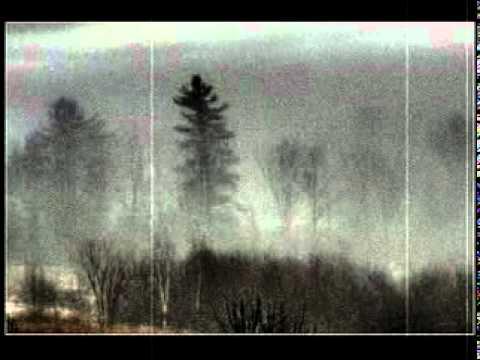 Thick Tule Fog.mpg