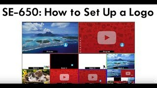 SE 650 - How to Set Up a Logo Using Luma or Linear Key