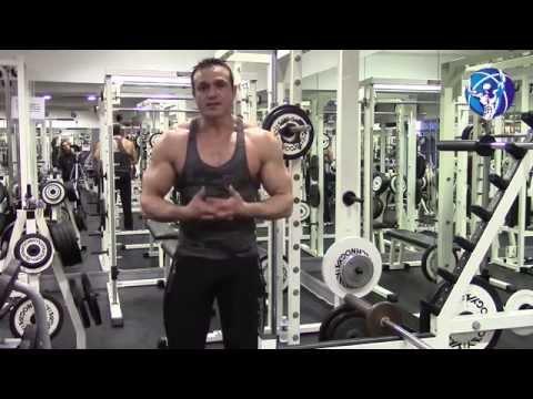 Les muscles de la poitrine brousya