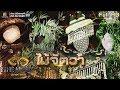 THE MASK LINE THAI  (รายการเก่า) |  Semi-Final Group ไม้จัตวา | EP.15 | 31 ม.ค. 62 Full HD