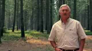 Informational Video: Forests Can Be A Global Warming Solutio
