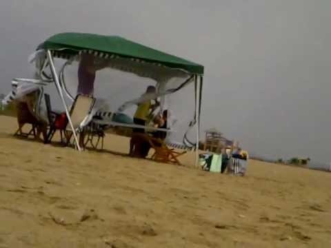 LA CARPA EN LA PLAYA Mp3