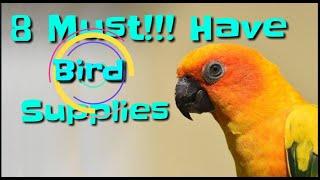 8 Must Have Bird Supplies