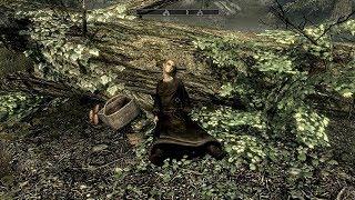 The Elder Scrolls V: Skyrim. Добыть кровь высокого эльфа. Прохождение от SAFa