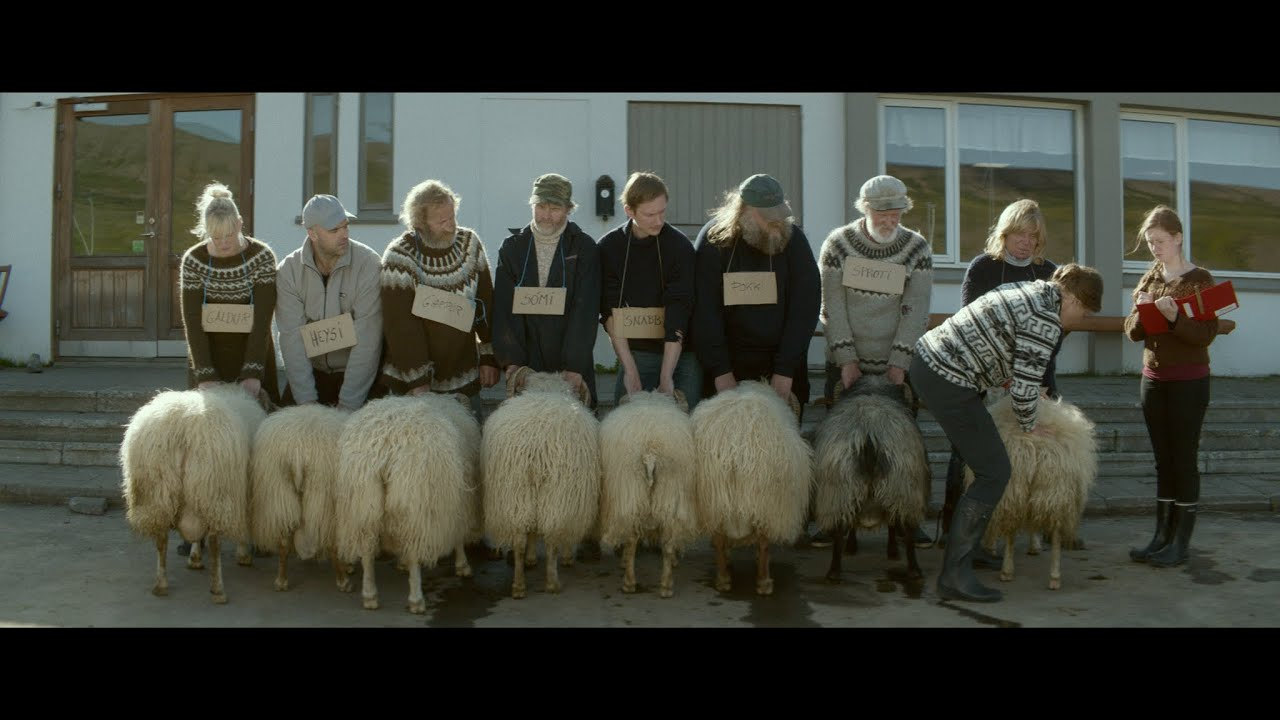 In de bioscoop: 'Rams'