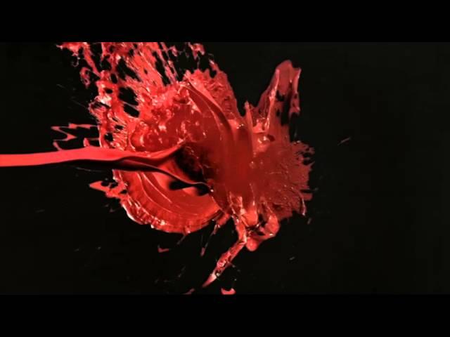 Haymes Paint Rebrand