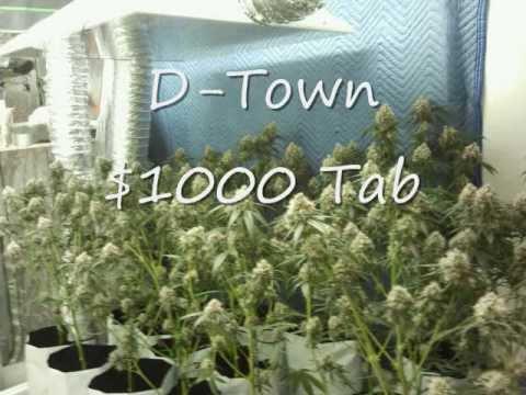 @Requestdtown 1000 Tab