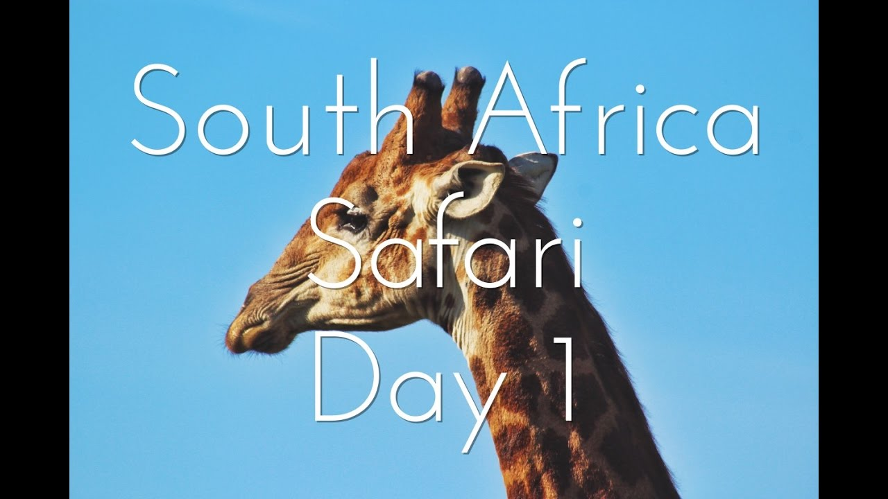 South Africa, Safari: Day 1 | Youtube By Harrison