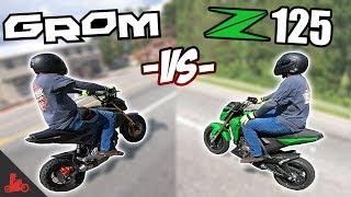 Honda Grom vs Kawasaki Z125 - IN RIDE Comparison!