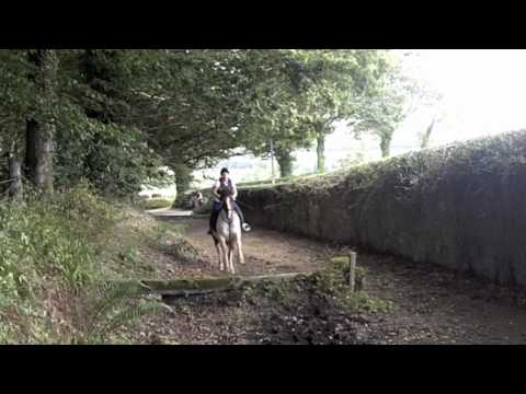 Enjoy Horse Back Riding in Ireland at the Bel Air Equestrian Centre