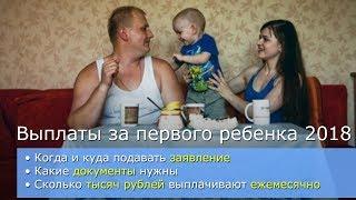 Как получить выплаты за первого ребенка и сколько тысяч рублей