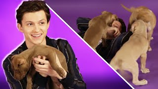 Tom Holland Plays With Puppies While Answering Fan Questions
