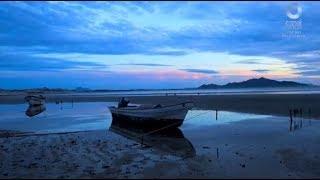 Islas de México - Isla Tiburón