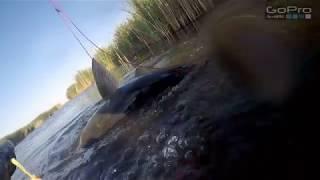 Подводная рыбалка в астрахани на раскатах