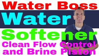 WaterBoss Water Softener Clean Flow Control & Brine Piston 9 Easy Steps