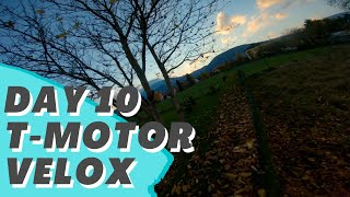 From FPV Noob To FPV Beast - DAY 10 - T-Motor Velox 2306 2400kv TEST + DESTROY