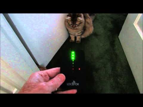 cat-goes-high-tech--mishas-pet-loc8tor