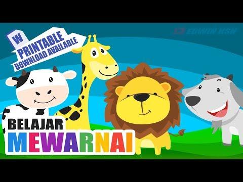 Video Mewarnai Gambar Singa Sapi Jerapah Dan Kambing Berita Viral
