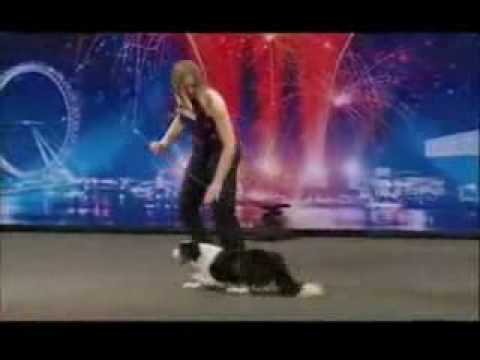Britain's Got Talent - Gin the.flv (видео)