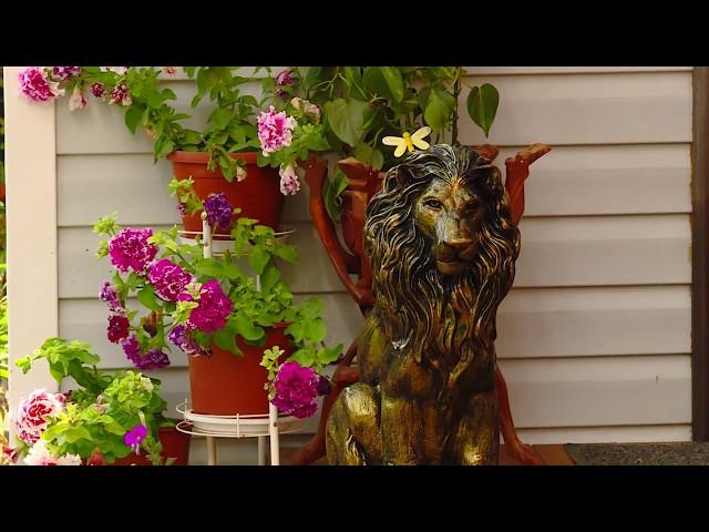 Садоводство с большой буквы – СНТ «Подсочка»
