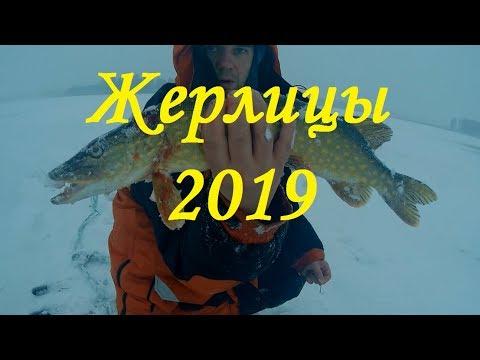Жерлицы 2019 . Отличный клёв щуки на жерлицы в январе.