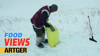 Melting Snow For Making Tea   A Mongolian Tradition | VIEWS