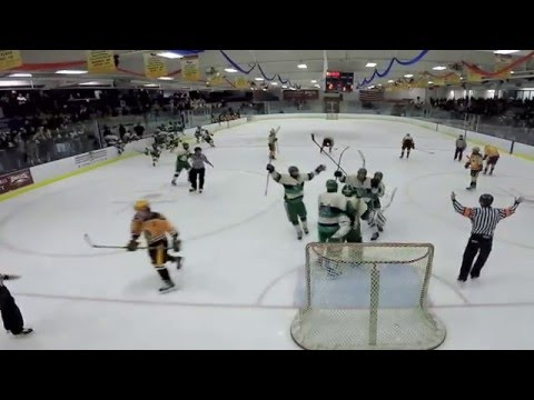 New Trier vs Loyola 2-1 in Illinois State Hockey Championships Semifinals AHAI 2016