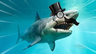 The Weirdest Shark in the World