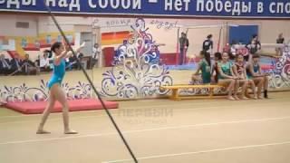В Благовещенске стартовал Всероссийский турнир Дальнего Востока и Сибири по спортивной гимнастике.
