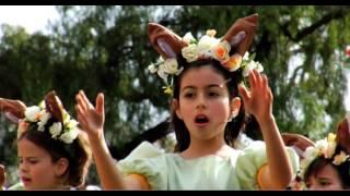 Festa da Flor na Madeira 2009