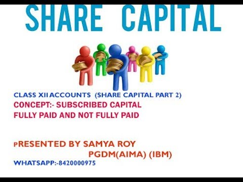 Companies Accounts  Balance  Sheet Class XII