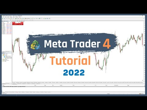 How To Use MetaTrader 4 (Tutorial For Beginners – How To Use A Charting Platform) [Trading Basics]
