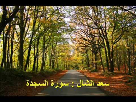 032 - السجدة