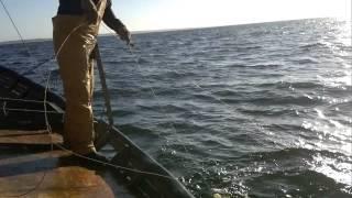 preview picture of video 'Pesca al Palangre Piriapolis Uruguay.'