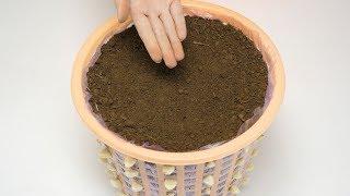 在垃圾桶里装满泥土,摆在阳台上有妙用,一年能帮你省下不少钱