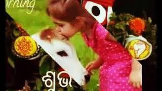 www.odia.video.com