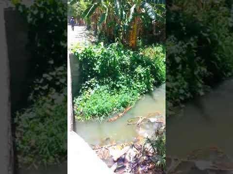 Problematica sobre la contaminacion del rio bacui abajo la vega
