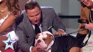 The Judges meet their dog-a-likes | Semi-Final 3 | Britain's Got Talent 2015