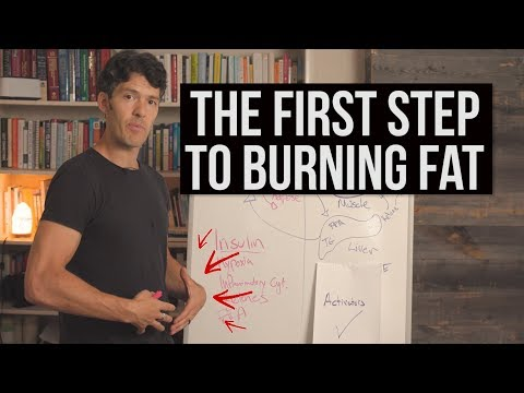 How to Burn Fat (the 1st step explained)