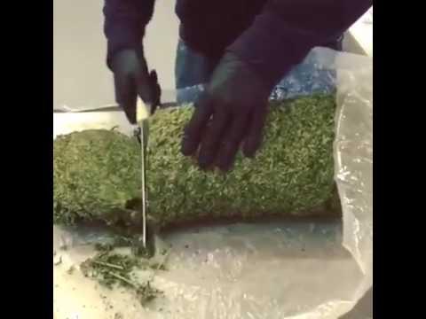 Le ricette di Herbalife per crescere sottile