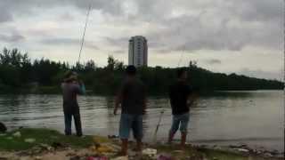 preview picture of video 'Memancing di Sabah KK - Surfcasting 2'