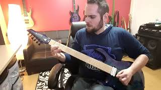 Strung Out -  Too Close To see (Guitar Cover)