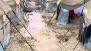 مأساة السوريين في المخيامات التركية أقشقلا (تل أبيض)