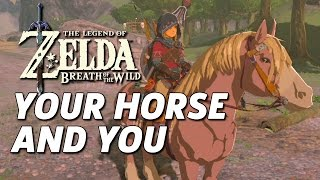 How To Care For Your Horse In Zelda: Breath Of The Wild