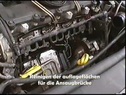 Das Benzin ai-80 okpd 2