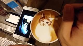 #本日の暇カプチーノ、『ねこ』。 #ラテアート #Latteart