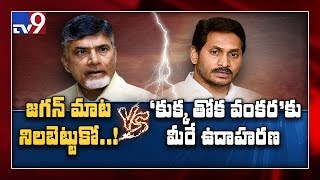 The highlights of AP Assembly : TDP Vs YCP - TV9